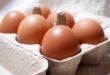恵那の養鶏 卵