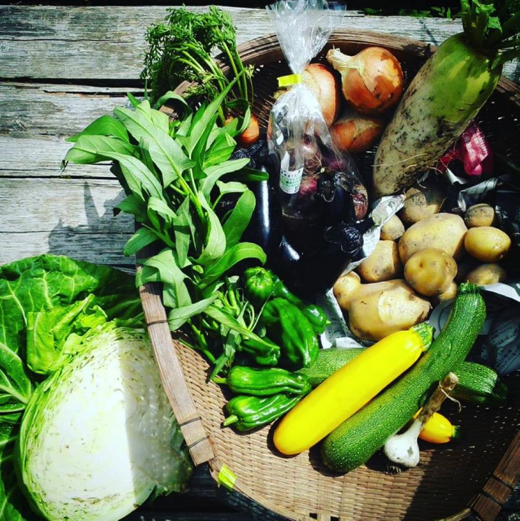 Farmrootsの野菜